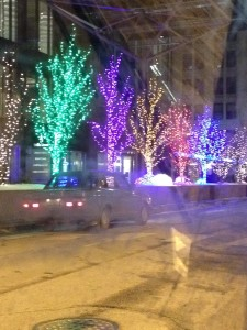 Colorful trees at the base of the Skydesk for Willis Tower.  Chicagoans still call it the Sear's Tower.